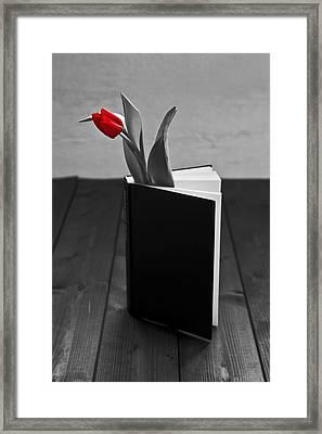 Tulip In A Book Framed Print by Joana Kruse