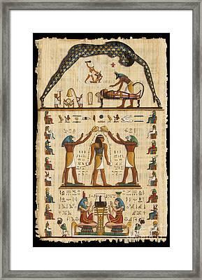 Twokupamun Papyrus Framed Print by Richard Deurer
