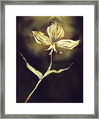 Untitled Framed Print by Anna Villarreal Garbis