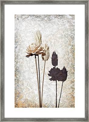 Vintage Floral 1 Framed Print by Al Hurley