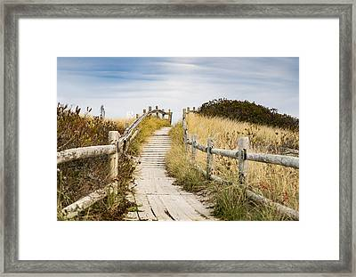 Walkpath To The Beach Framed Print by Enrico Della Pietra