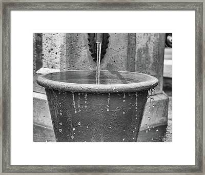 Don't Wast Water Framed Print by Dennis Dugan