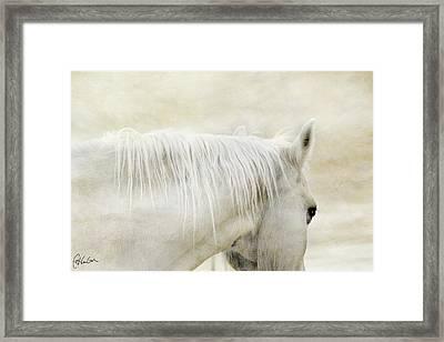 White On White Framed Print by Christine Hauber