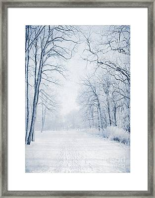 Winter Path Framed Print by Svetlana Sewell