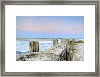 Wooded Horizon Framed Print by Drew Castelhano