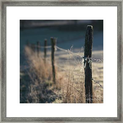 Wooden Posts Framed Print by Bernard Jaubert