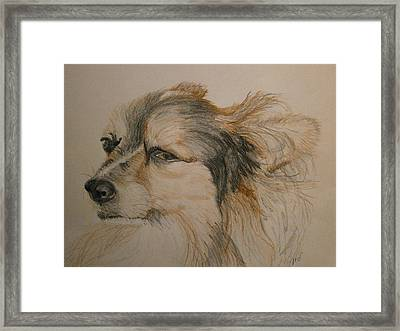Zeus Framed Print by Maria Woithofer