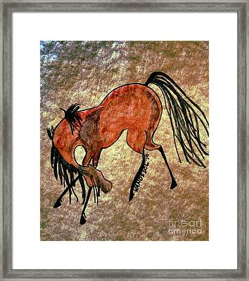 The Dancing Pony Framed Print by Scott D Van Osdol