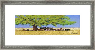 100 Degrees Plus Framed Print by Tracy L Teeter