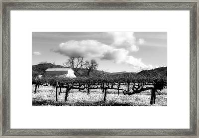 Napa Valley Vineyard Framed Print by Mountain Dreams