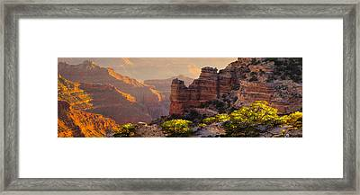 A Grand View Framed Print by Mikes Nature