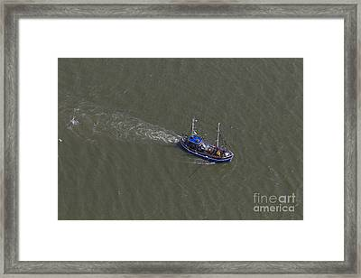 150403p217 Framed Print by Arterra Picture Library