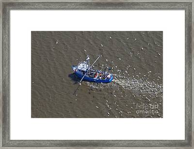 150403p220 Framed Print by Arterra Picture Library