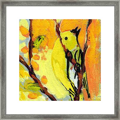 16 Birds No 1 Framed Print by Jennifer Lommers