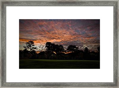 16 Green Dawn Framed Print by Edwin Voorhees