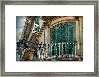 17 In One Fell Swoop Framed Print by Hanny Heim