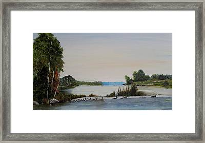 19 Geese Framed Print by Marilyn  McNish