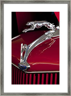 1936 Ford 68 Pickup Hood Ornament Framed Print by Jill Reger