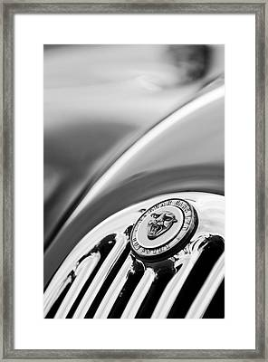 1952 Jaguar Hood Ornament2 Framed Print by Jill Reger