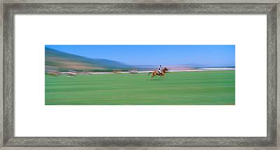 1998 World Polo Championship, Santa Framed Print by Panoramic Images