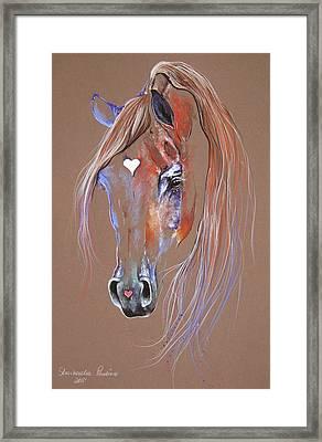 Arabian Horse Framed Print by Paulina Stasikowska