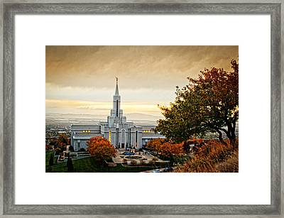 Bountiful Temple Tree Framed Print by La Rae  Roberts