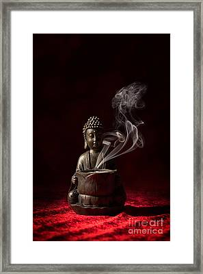 Buddah Framed Print by Amanda And Christopher Elwell