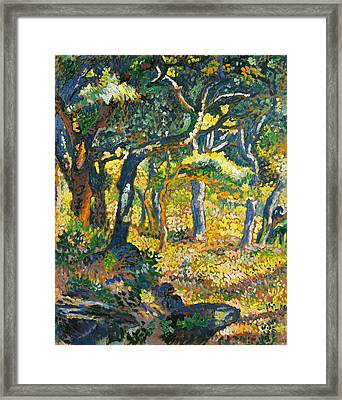 Clearing In Provence  Framed Print by Henri-Edmond Cross