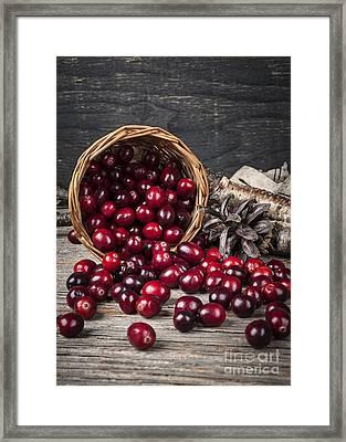 Cranberries In Basket Framed Print by Elena Elisseeva