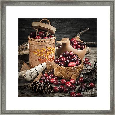 Cranberries Still Life Framed Print by Elena Elisseeva