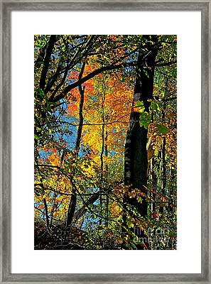 Fall Fire Works Framed Print by Robert Pearson