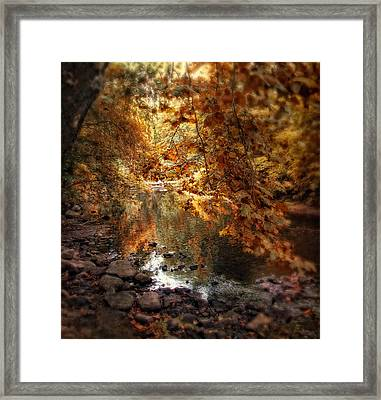 Fall Reflected Framed Print by Jessica Jenney