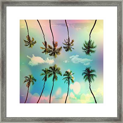 Florida Framed Print by Mark Ashkenazi