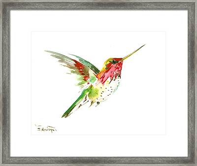 Flying Hummingbird Framed Print by Suren Nersisyan