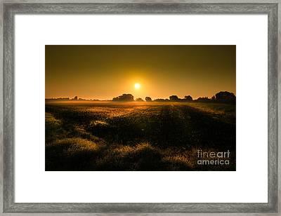 Foggy Morning Framed Print by Franziskus Pfleghart