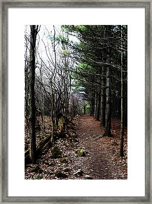 Heading Home Framed Print by Phill Doherty