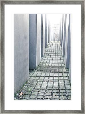 Holocaust Memorial Framed Print by Tom Gowanlock