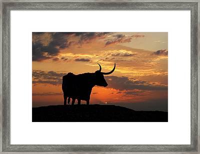 Into The Sunset Framed Print by Robert Anschutz