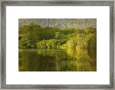 Landscape Framed Print by Svetlana Sewell