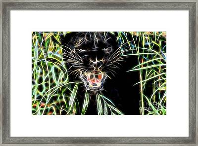 Panther Collection Framed Print by Marvin Blaine