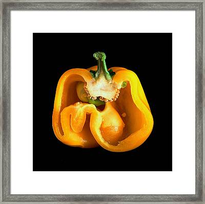Pepper Framed Print by Bill Morgenstern
