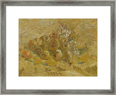 Quinces, Lemons, Pears And Grapes  Framed Print by Vincent van Gogh