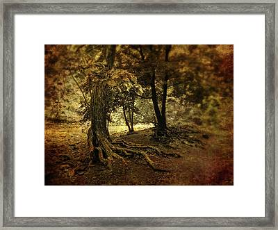 Rooted In Nature Framed Print by Jessica Jenney