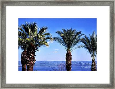 Sea Of Galilee From  Mount Of The Beatitudes Framed Print by Thomas R Fletcher
