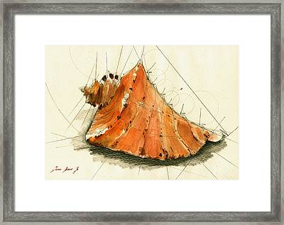 Seashell Art Painting Framed Print by Juan  Bosco
