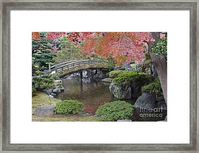 Sento Imperial Palace Gardens Lake Framed Print by Rob Tilley