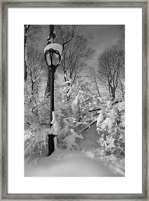 Snow Storm 2 Framed Print by Robert Ullmann