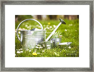 Spring Garden Framed Print by Mythja Photography