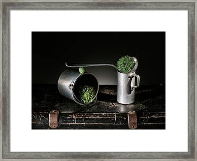 Still Life With Pumpkins And Scale Framed Print by Nailia Schwarz