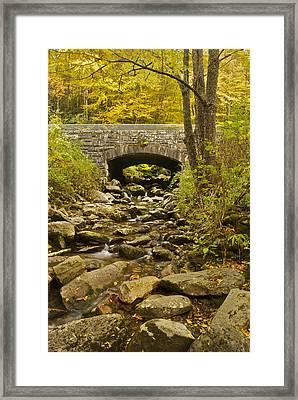 Stone Bridge 6063 Framed Print by Michael Peychich